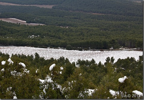 Las Primeras Nieves_en Año Bisiesto_Enero del 12