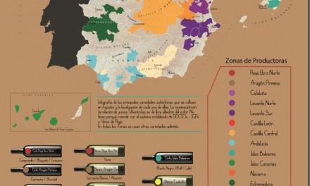 Infografía de los Vinos de España de Variedades Autóctonas